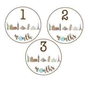 travel baby milestone stickers
