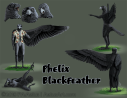 Phelix Blackfeather Ref Sheet