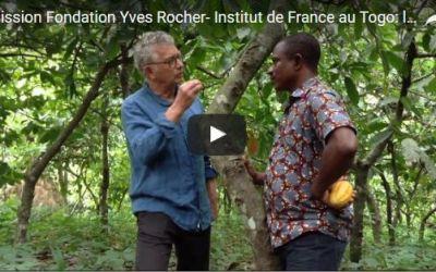 L'agroforesterie au Togo avec la Fondation Yves Rocher