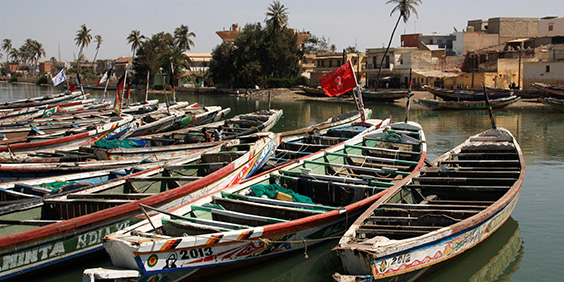Senegal-fishing-boats