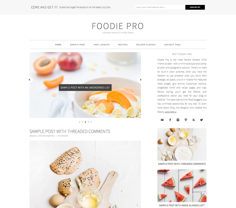 Foodie Pro Theme
