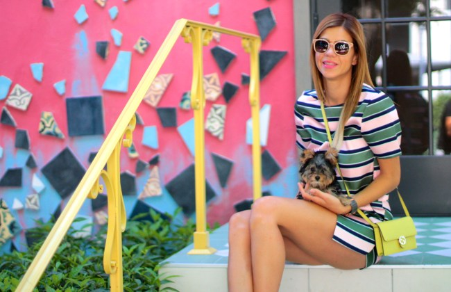 amanda tur from a fancy affair miami fashion and lifestyle blogger wearing matching separates set with yellow gucci wallet on chain bag during summer with penelope tur the teacup yorkie and tory burch sunglasses in miami downtown midtown florida area