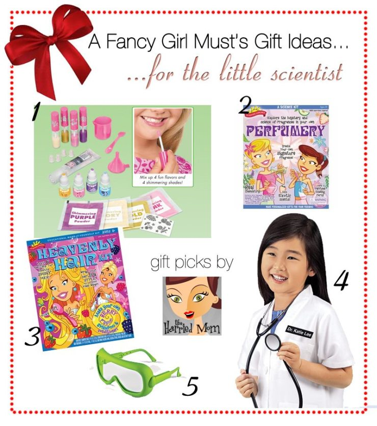 AFGM Holiday Gift Guide: The Little Scientist