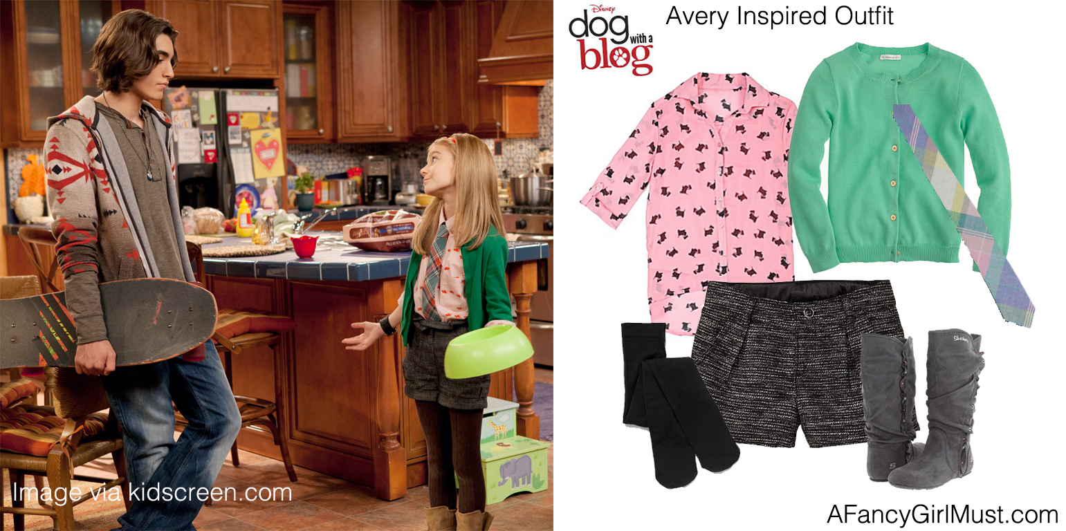 Blog Avery Dog Clothes