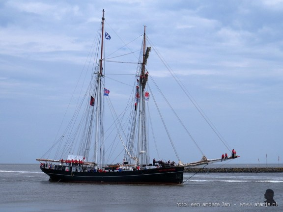 tallship race harlingen 005