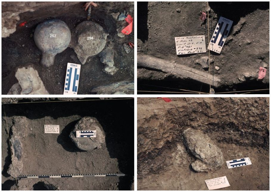 mastodonte | Afán por saber