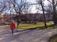 Park life...