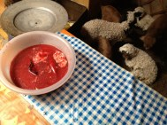 I think it was a bowl of afterbirth... but it could og been drained from the sheep that was on the stove...