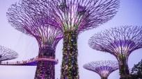 singapore-2096833_1920