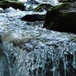 River_flow
