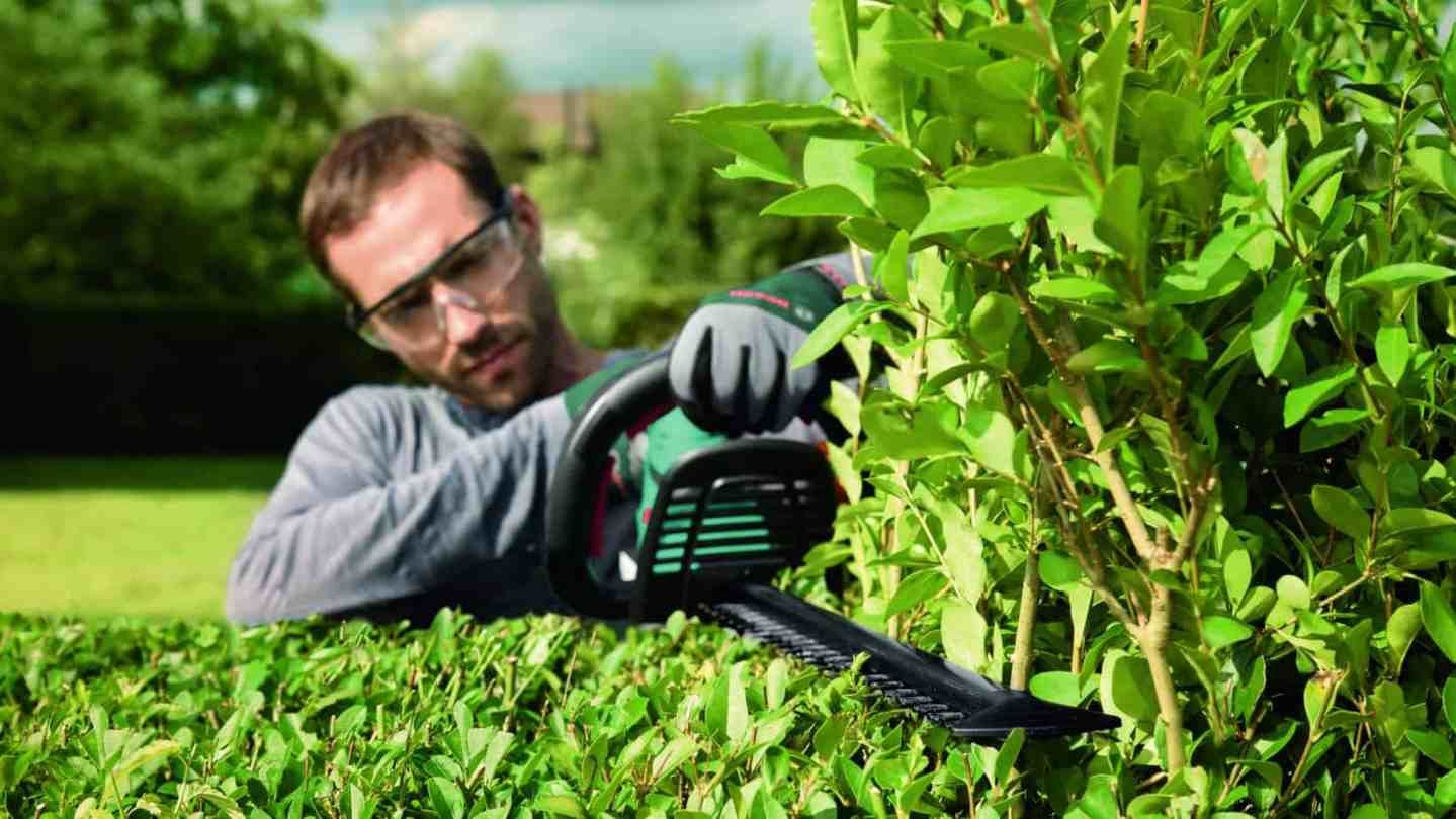 Everything you need to know about hedgecutters