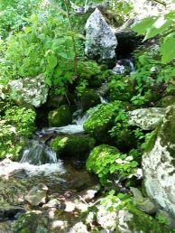 Falls on a trail by Big Meadows
