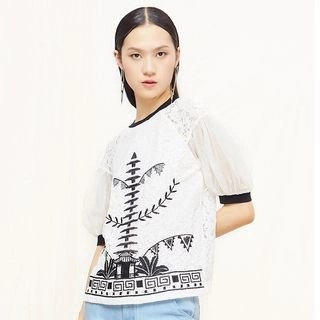 Cloudwood Embroidered Short Sleeve Lace Blouse
