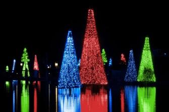 seaworld-christmas-Sea of Trees color