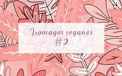 Fromages véganes #2