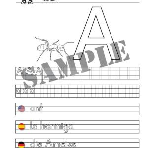 ant • printable animal name sheet