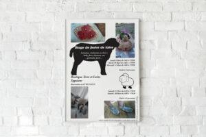 affiche d'un atelier de feutrage de laine