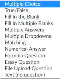 Canvas quiz question type options