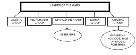 Mara Gang Structure