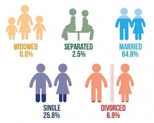 AffStat 2013 marital status
