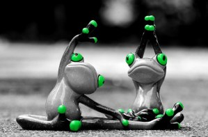 image of exercising frogs