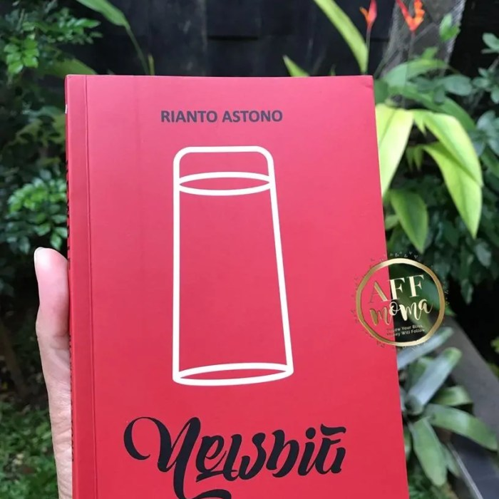Review Buku Newbie by Rianto Astono