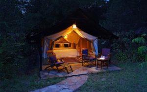 Sarova Mara Camp - accomodation