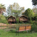 Wildebeest Eco-Camp