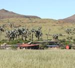 Palmwag Campsite
