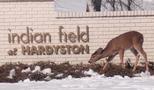 Indian Field, Hardyston NJ