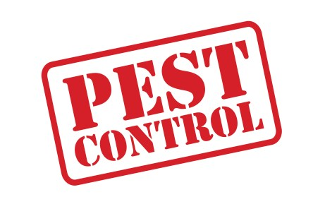 Best Wildlife Removal Companies, Best Wildlife Removal & Pest Control
