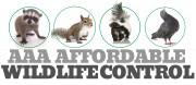 AAA Affordable Wildlife Control