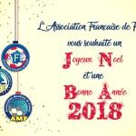bonnes fetes voeux-aff-2018-futsal-amf-aff