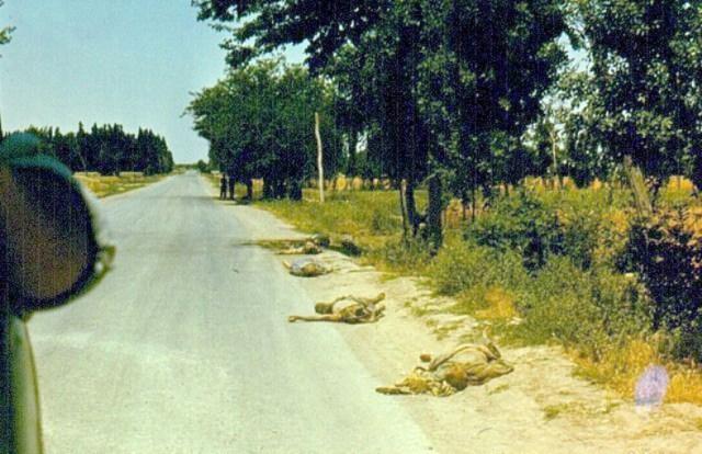 Расстрелянные афганцы. Оставлены у дороги для устрашения.