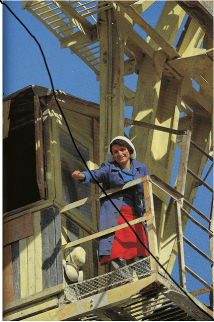 Farm worker - 1980's