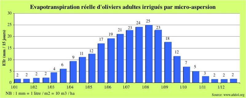 800px-Graph_ETR_olivier_en_micro-aspersion