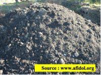 Compost obtenu au Moulin à huile MARGIER en 2007