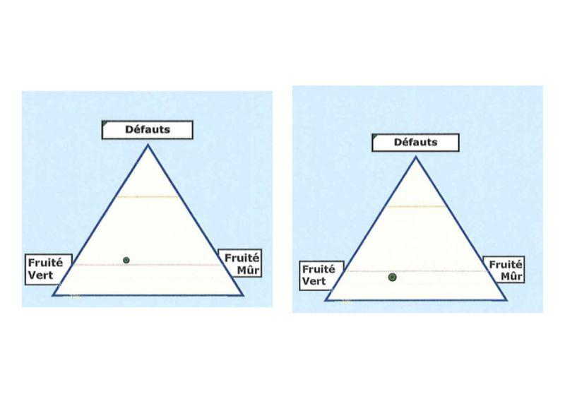 800px-Triangle_8622_8623