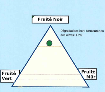 Triangle_FN