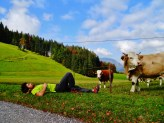 Autriche - Un repos bien mérité