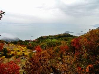 Vue sur le lac de Skadarsko
