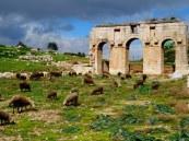 Turquie - Le site de Patara