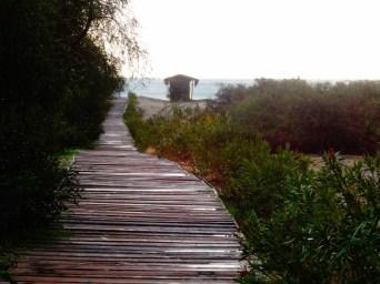 Le site de Patara - à côté de la mer