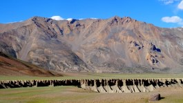 La vallée de Sarchu