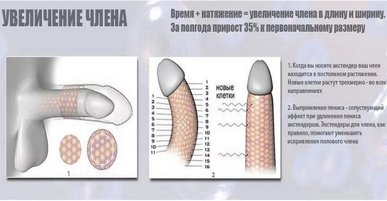 rosnące recenzje masażu penisa)