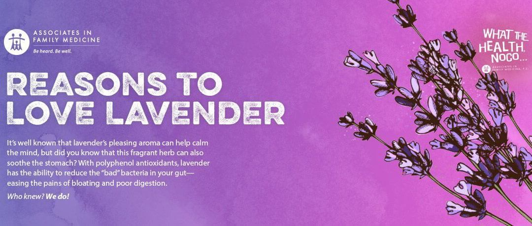 Reasons to Love Lavender