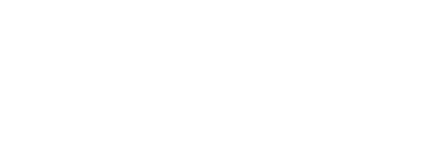 AFM Simulation