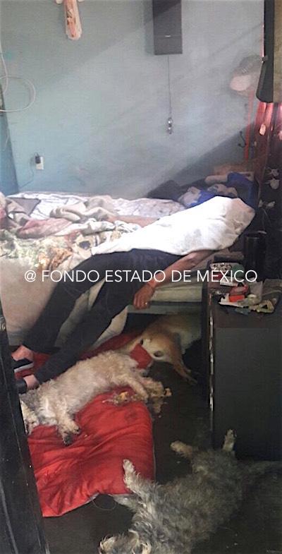 Hombre abandonado por su familia se suicida junto con sus nueve perros en Edomex