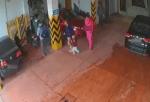»VIDEO: Le iban a robar a su hijo y luchó como una fiera para defenderlo