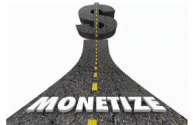 Monetize - How to Create and Run a Million$$$ Website!